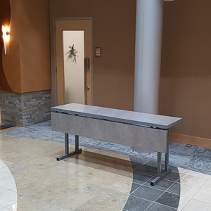 6'x2' table provided